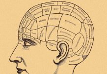 10 dicas para expandir seu conhecimento