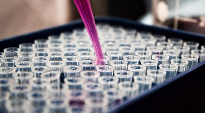 Terapia Celular Regenerativa